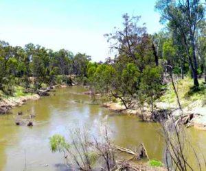 Goulburn River at Shepparton, Vic