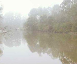 Yarra River near Eltham, Vic